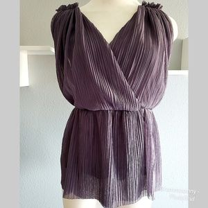 Anthropologie Deletta Sheer Purple Grecian Top